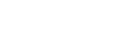 Palm Coast logo